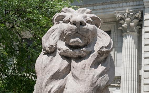 Closeup of the NYPL lion statue.